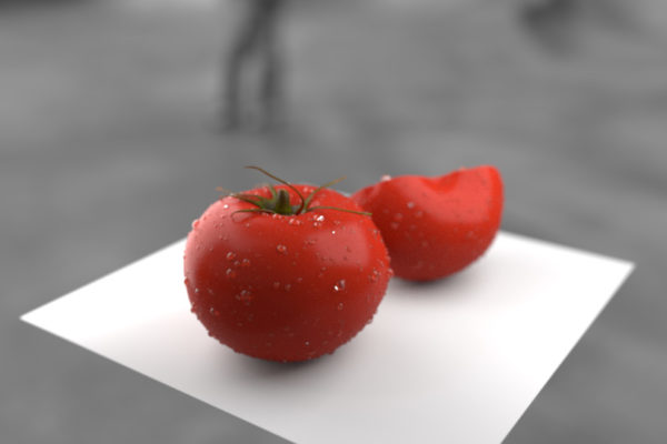 blog foodscape tomato updated