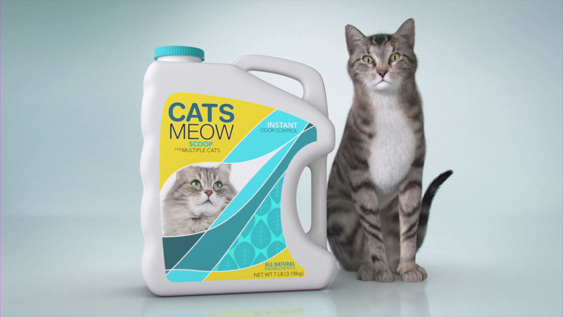 cats meow pack cat shot
