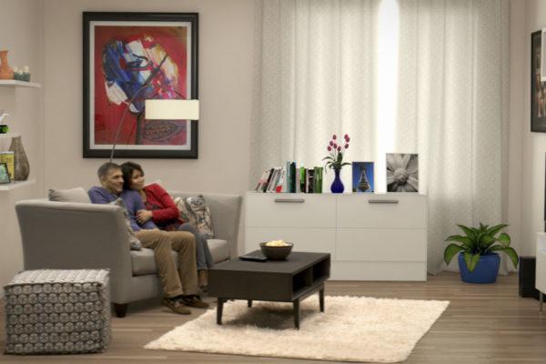 cox households livingroom