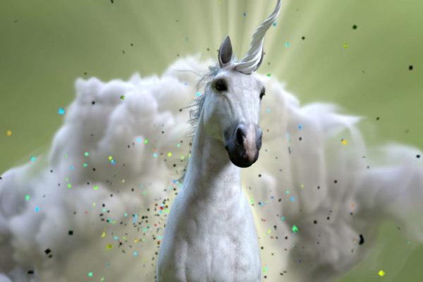 Palo Alto Networks Unicorn 1