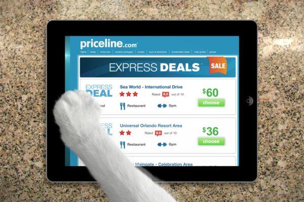 priceline-catpaw-2