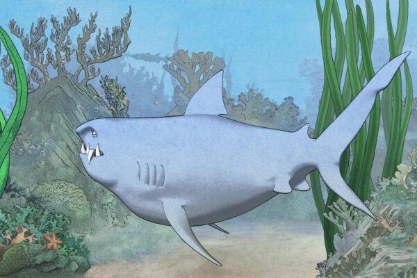 sharkly-2