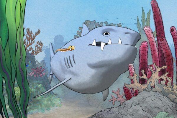 sharkly-5
