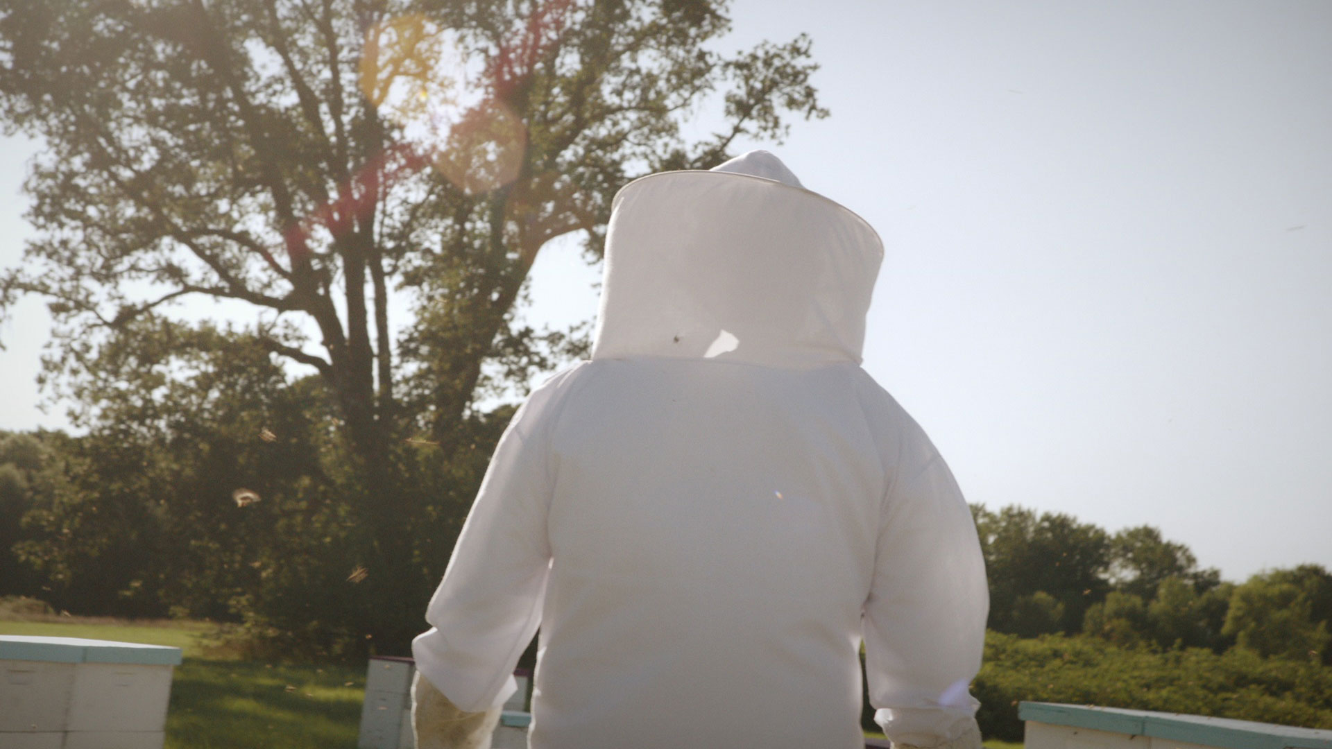 upmc beekeeper 1