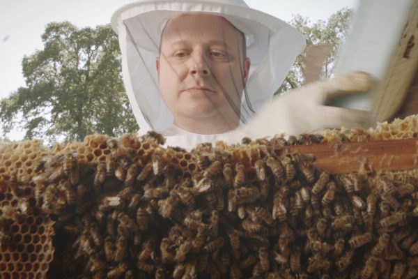 upmc beekeeper 3