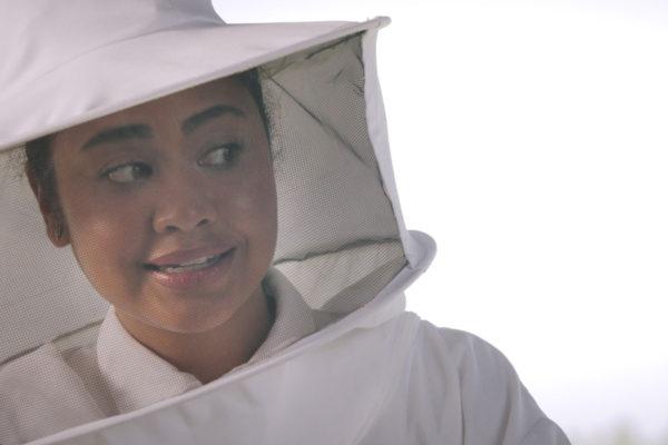upmc beekeeper 7